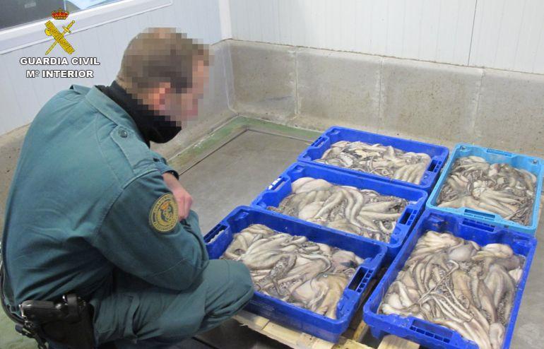 Intervienen 5.500 kilos de pescado congelado al carecer de etiquetado y ser su origen desconocido: Intervienen 5.500 kilos de pescado congelado sin etiquetado en Ayamonte