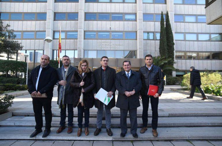 Alcaldes se concentran en Madrid