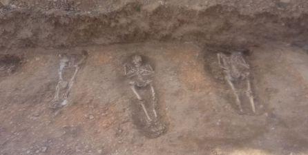 RESTOS HUMANOS: Modernizaban regadíos y encontraron restos humanos