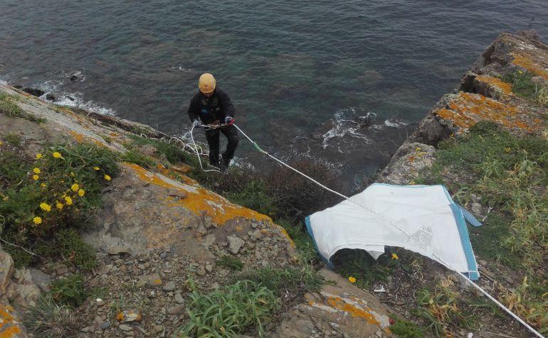 Especialistas en trabajos verticales se encargan de eliminar las colonias de carpobrotus  en los acantilados entre Sa Mesquida y La Mola.