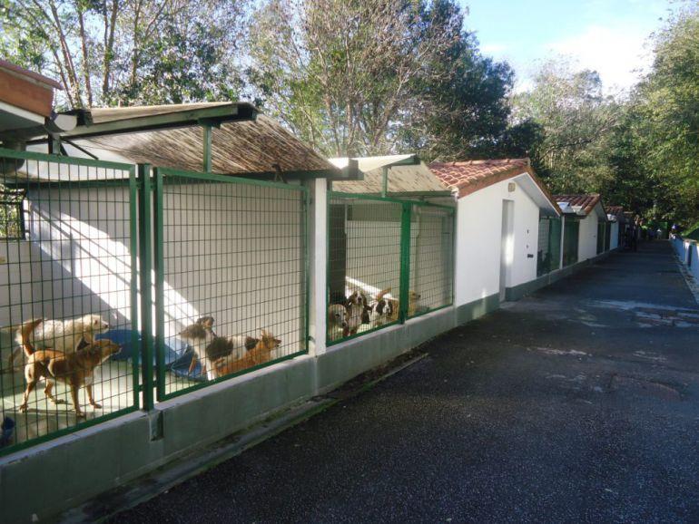 Instalaciones de la protectora de animales.