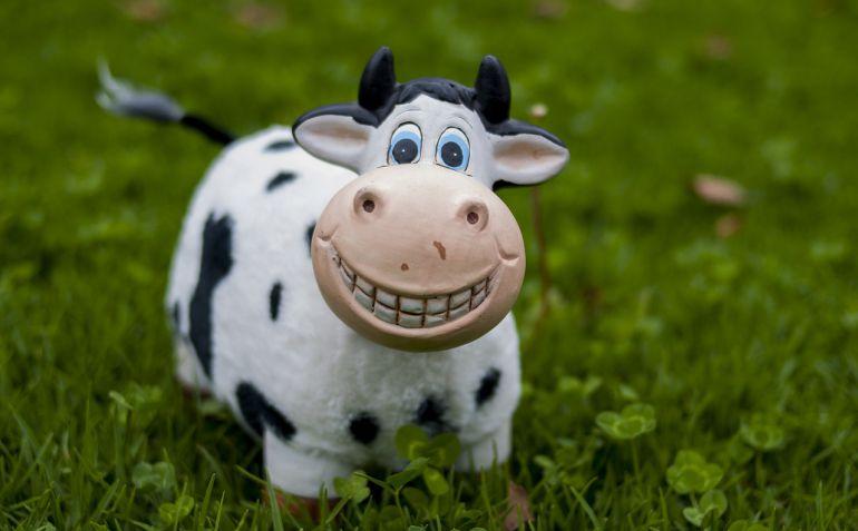 Todos los años se celebra un concurso de ganado vacuno frisón en la Feria del Campo de Alaior que es el más importante de toda la Comunidad