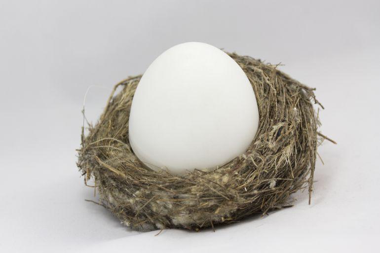 ¿Qué tipo de huevo es más sano?