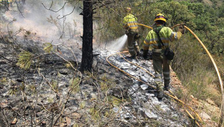Controlado el incendio forestal en Monte Picayo