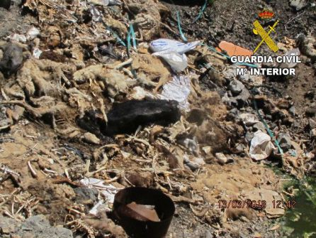 Abandonaba los cadáveres de sus animales en espacios públicos