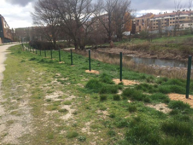 La valla de protección del río Bañuelos a su paso por el Parque María Pacheco falta desde el pasado mes de septiembre