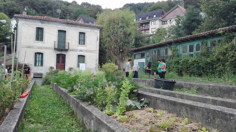 Vista de parte de la parcela de Viveros de Ulía.