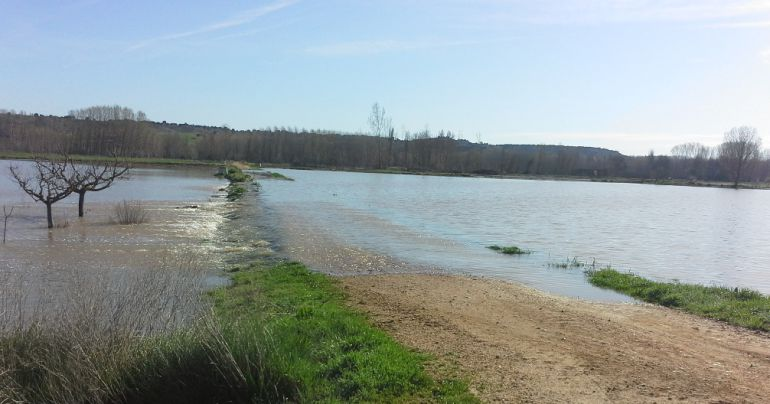 El desbordamiento del río <h3 class='enlacePalabraNoticia' onclick='opcionBuscarActualidad('Riaza','')' >Riaza</h3> preocupa a los agricultores del Nordeste