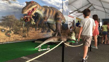 Piezas de la exposición de dinosaurios animatrónicos.