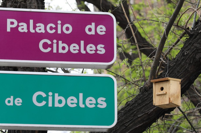 Madrid instala 126 cajas nido en los árboles del Paseo de la Castellana