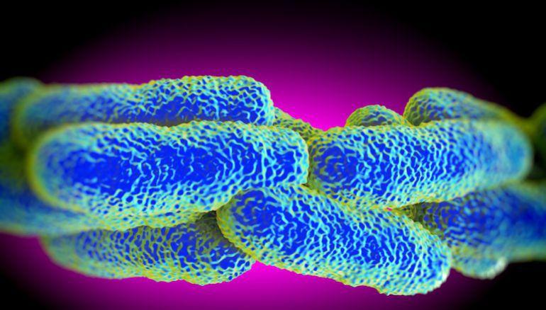 Detectados dos casos de Legionela en Úbeda