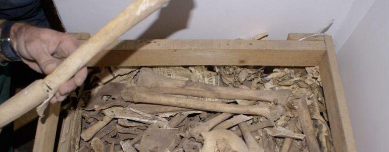 Resultado de imagen de Entregan de forma anónima un conjunto de piezas prehispánicas en La Palma