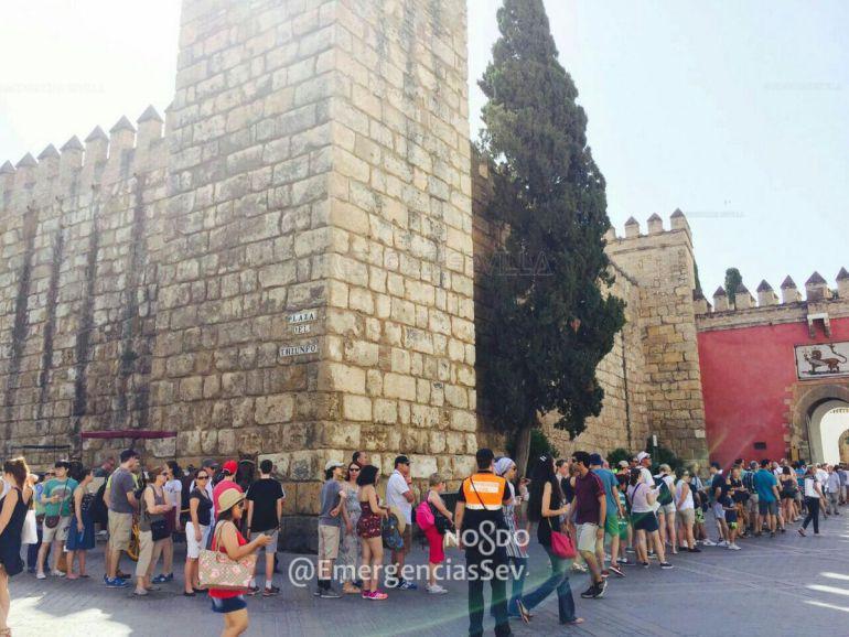 Ocho heridos al caer una rama de grandes dimensiones en el Real Alcázar