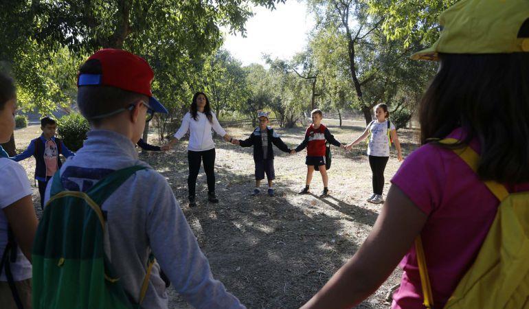El nuevo Parque Central sería una auténtico pulmón verde para Mairena del Aljarafe