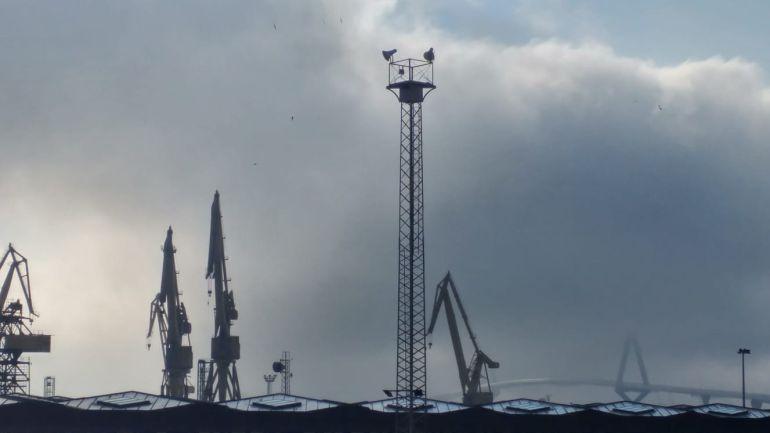 Las máquinas de los astilleros de Cádiz con el Puente de la Constitución de 1812 de fondo el 13 de junio de 2018
