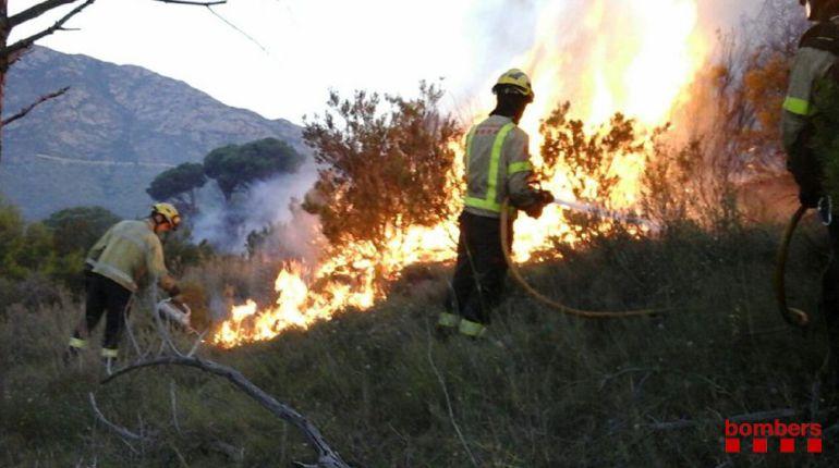 Els bombers apagant les flames del foc de Llançà.