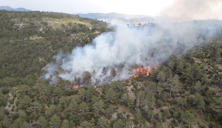 Incendio forestal en Villahermosa del Río