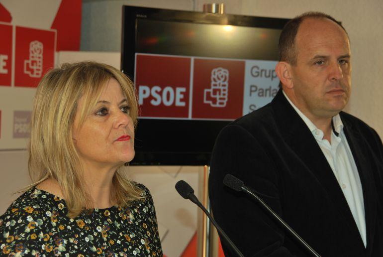 La socialista Ana Agudíez durante una comparecencia de prensa junto al también procurador José Luis Aceves