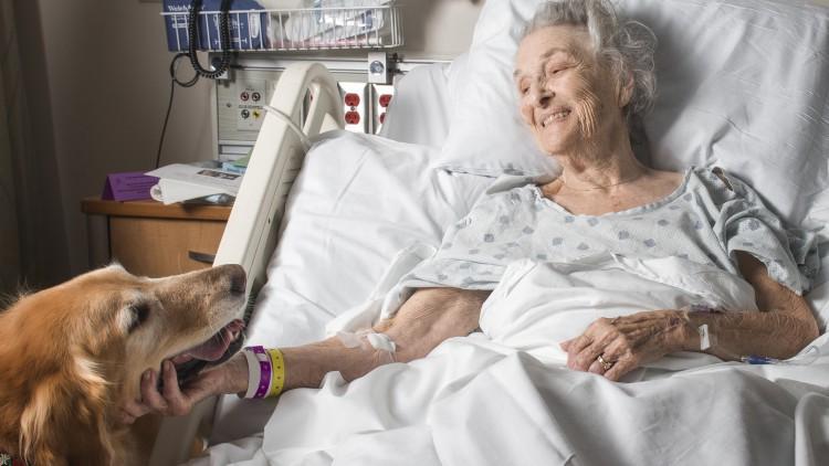 El Hospital del Vinalopó permite a pacientes despedirse de sus animales de compañía