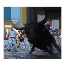 Segundo encierro de San Ferm�n