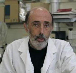El forense Paco Etxeberría