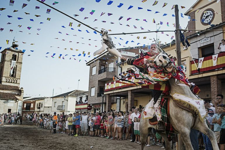 ¿Orgullosos de tradiciones que torturan animales?