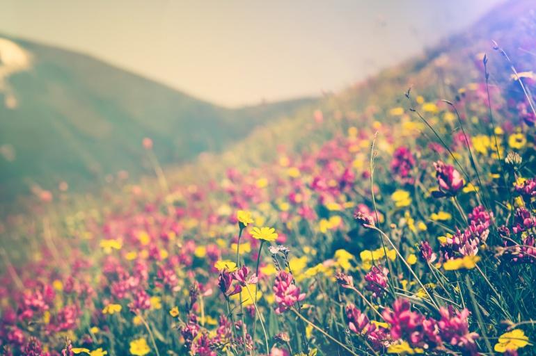 10 claves para combatir la astenia primaveral