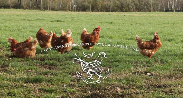 Una de las imágenes corporativas de la granja de Nuria Varela.