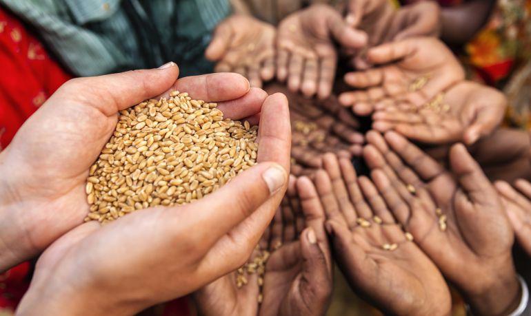 Una mujer voluntaria ofrece grano a niños que se encuentran con escasez de alimento.