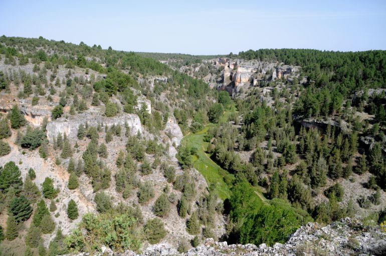 Vista del monte de socios de Herrera de Soria, en el alto del parque natural Cañón del Río Lobos.