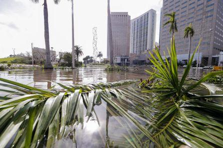 Calles inundadas y árboles derribados tras el paso del huracán Irma en Florida (Estados Unidos). Muchas áreas de la ciudad permanecen bajo toque de queda.