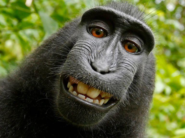 Naruto sonriendo en su selfie