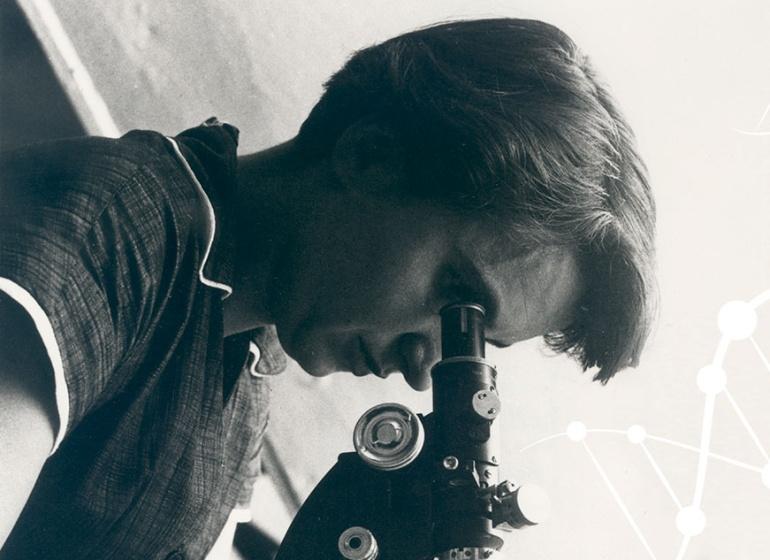 Rosalind Franklin observa a través del microscopio