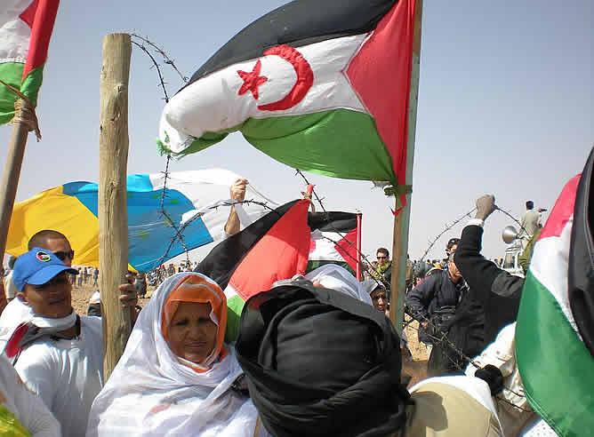 Una mina antipersona ha explotado cuando unas 2.500 personas se concentraban frente al muro construido por Marruecos para dividir el Sáhara Occidental. Un chico saharaui ha perdido la pierna derecha, a la altura de la rodilla, y se teme además que pueda haber más heridos. Según los representantes del Frente Polisario, todos los españoles, que eran mayoría entre los participantes en la concentración se encuentran bien.