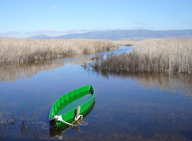 """El enclave de Ciudad Real cuenta ya con más de 1.200 hectáreas encharcadas.- Es el último ecosistema de """"tabla fluvial"""""""