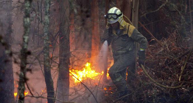 Cerca de doscientas hectáreas de monte ha quemado ya el incendio forestal que afecta al parque natural de las Fragas do Eume