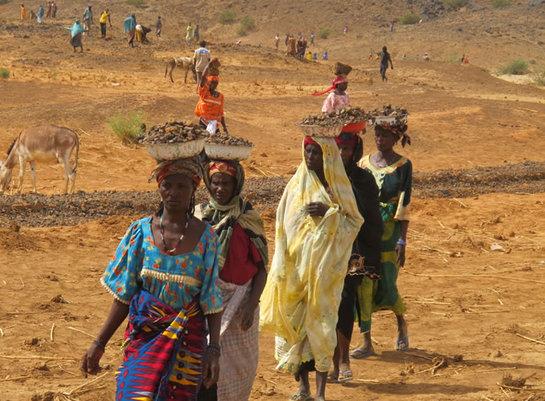 FOTOGALERIA: Un grupo de mujeres de Ibohamane trabajan en la construccion de un dique para canalizar las esperadas lluvias