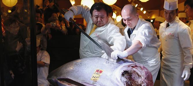 El presidente de la cadena de restaurantes de sushi Kiyomura corta el atún rojo más caro del mundo