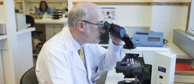 El investigador Ramón Cacabelos trabajando en su laboratorio