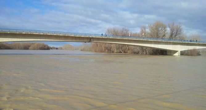El río Ebro a su paso por Tudela.