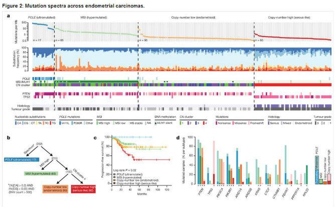 Captura de pantalla de una tabla en la que aparecen los espectros de mutación en los carcinomas endometriales
