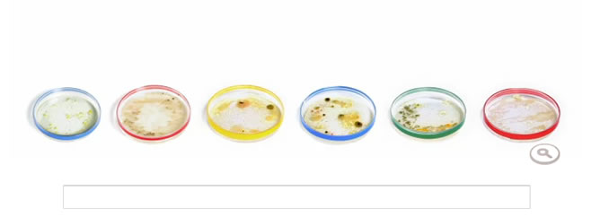 Julius Richard Petri, doodle de Google