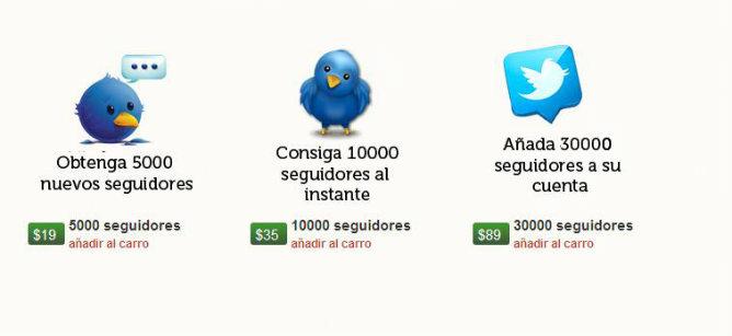 Vista de la página seguidores-twitter.es