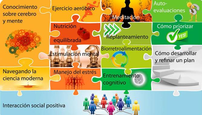 Mejorar la salud y el rendimiento del cerebro es importante saber cómo funciona y evoluciona a lo largo de la vida
