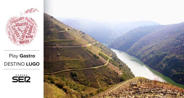 Viñedos de la Ribera Sacra, a orillas del río Sil.