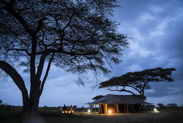 Los mejores safaris de África