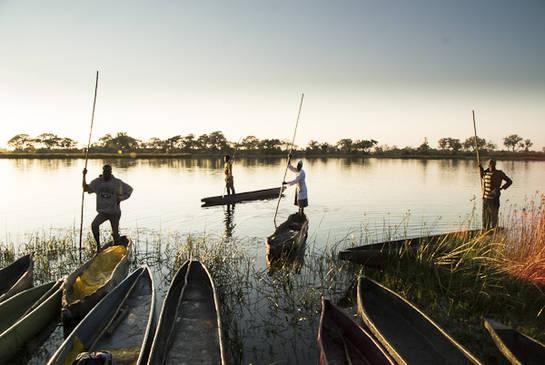 Okavango-Paco Nadal