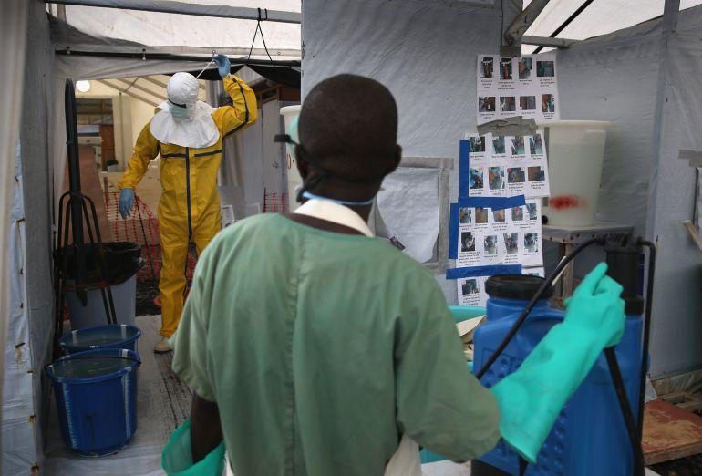 """Un equipo internacional, liderado por España, ha creado una macropartícula capaz de impedir la infección de las células por el virus del Ébola """"in vitro""""."""