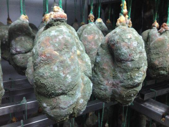 Morcones de cerdo ibérico en el secadero de Eíriz.