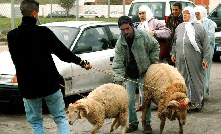 Varios musulmanes melillenses, en una imagen de archivo, traen, arrastrando amarrados con una cuerda, los borregos que serán utilizados en la Fiesta del Sacrificio